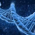 「基因界的騰訊」成功過會,華大基因將正式登陸A股