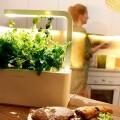 割價販售!綠化小天地又好玩 Smart Garden 3 智能盆栽