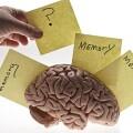 從NLP終生學習開始,談談深度學習中記憶結構的設計和使用